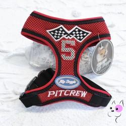 Pettorina Soft Racing Team