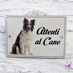 Attenti al Cane Border Collie 1