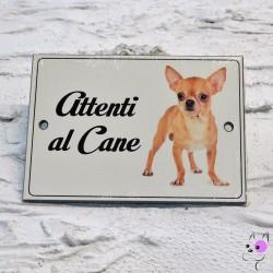Attenti al Cane Chihuahua