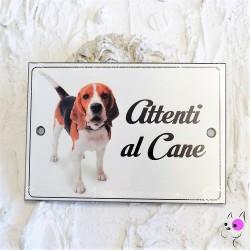 Attenti al Cane Beagle