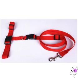 Cintura Jogging con Guinzaglio